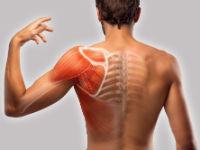 Боль в плече и лопатке