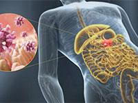 Линекс от кишечного гриппа