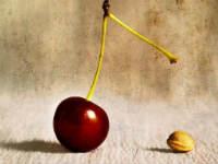 Ягода вишни
