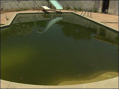 Грязная вода в бассейне