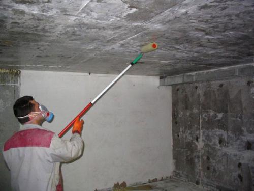 Обработка стен средством от грибка