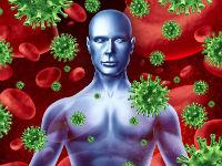 Вирусы и человек